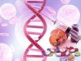急速に発展するがん免疫細胞療法の未来像