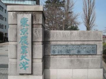 機能性表示の届け出、静岡県の荒畑園や秋田県の大潟村あきたこまち生産者協会