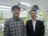 理科大と京大、名大、徳島大、生きた植物の核内DNAを解析できるTALE-FP法