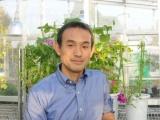基生研、慶大、九大、遺伝研、アサガオの全ゲノムを解読