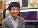 国がん、成熟した肝細胞を低分子で前駆細胞に脱分化することに成功