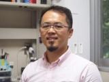 東京医科歯科大の木村准教授、ブタ血管を脱細胞化した人工血管を開発へ