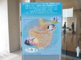 神戸大、潰瘍性大腸炎患者の便を利用しヒト腸管モデルを評価