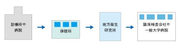 図2 新型コロナウイルスの遺伝子検査の流れ