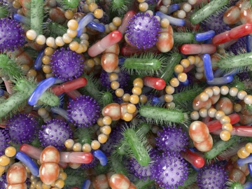 COVID-19の重症化の謎とマイクロバイオーム関与の可能性