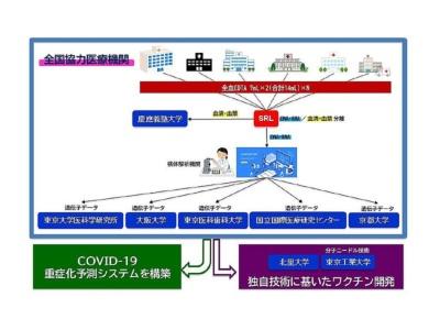 図1 タスクフォースが実施する研究の全体像