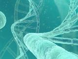 米Flagship社、独自の遺伝子編集技術を保有する米Tessera社を紹介