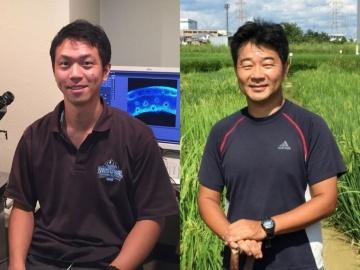 名大の芦苅教授と永井助教ら、洪水でも収穫できるイネゲノム成果をNature誌にて発表