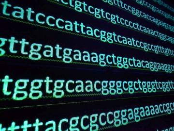 ゲノムバンク利活用事業、ようやく統合へ