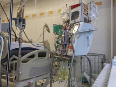 重症化した患者の一部は、体外式膜型人工肺(ECMO)による治療も実施される(画像:123RF)