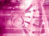 名大、膵臓がんの5-FU耐性を克服する核酸医薬ミセルを合成