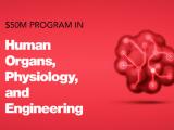 肺疾患モデル開発のHiLung、英Wellcome Leapの人工臓器開発プログラムに採択
