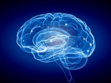 米Cognito社、デジタル医療機器がアルツハイマー病の第2相で脳機能改善