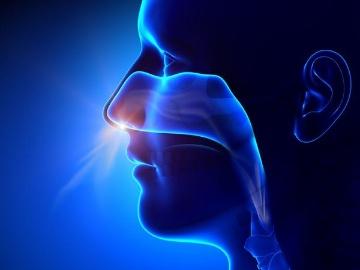 英Oxford大学、コロナワクチンを経鼻投与する第1相試験を開始