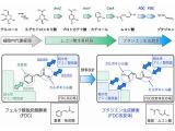 理研と横浜ゴム、日本ゼオン、ブタジエンの発酵生産で低炭素に貢献へ