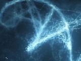 Salk研究所と昆明理工大学など、種の異なる細胞間コミュニケーションを分析