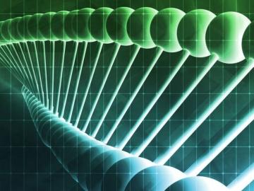 米Illumina社と米Kartos社、TP53のコンパニオン診断薬を開発へ