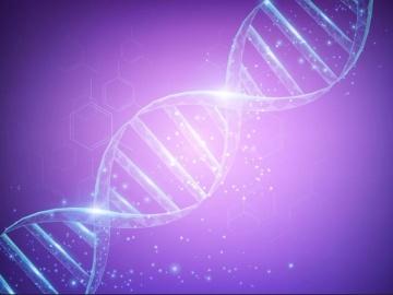 アンチセンス医薬、リードファーマやルクサナバイオテクが独自の修飾核酸を活用し臨床開発へ