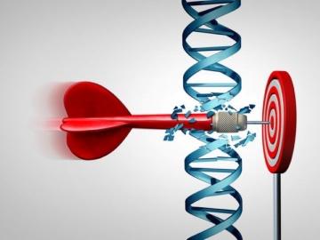 核酸標的薬、Veritas In Silicoとリボルナバイオサイエンスが大手製薬と提携し共同研究中
