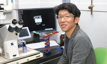 ゲノムの自己複製系を再現、殻が無くともゲノムは増える