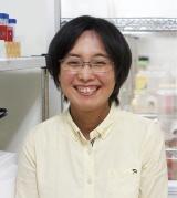 北海道大学遺伝子病制御研究所 三浦恭子 准教授