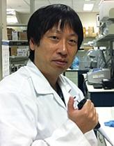 蛍光蛋白質センサーをテーラーメード化