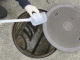 下水による新型コロナウイルスのモニタリングは有用か?