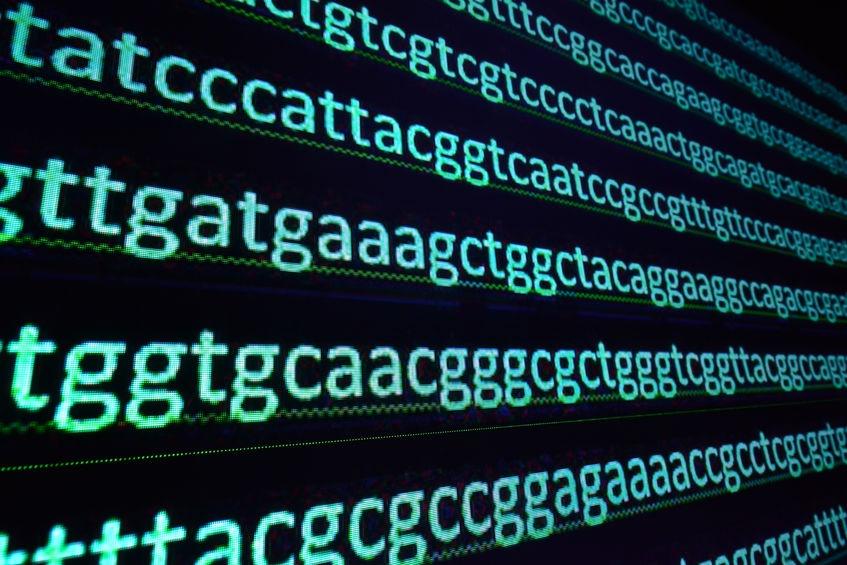 発展する環境DNA(eDNA)領域
