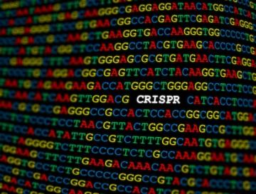 ゲノム編集技術の最新動向