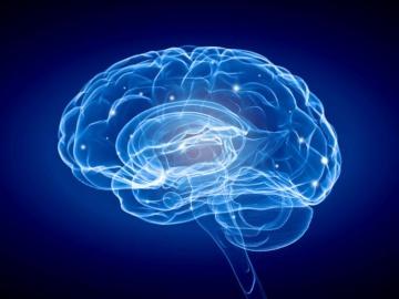 実用化に近づく脳への薬物送達技術