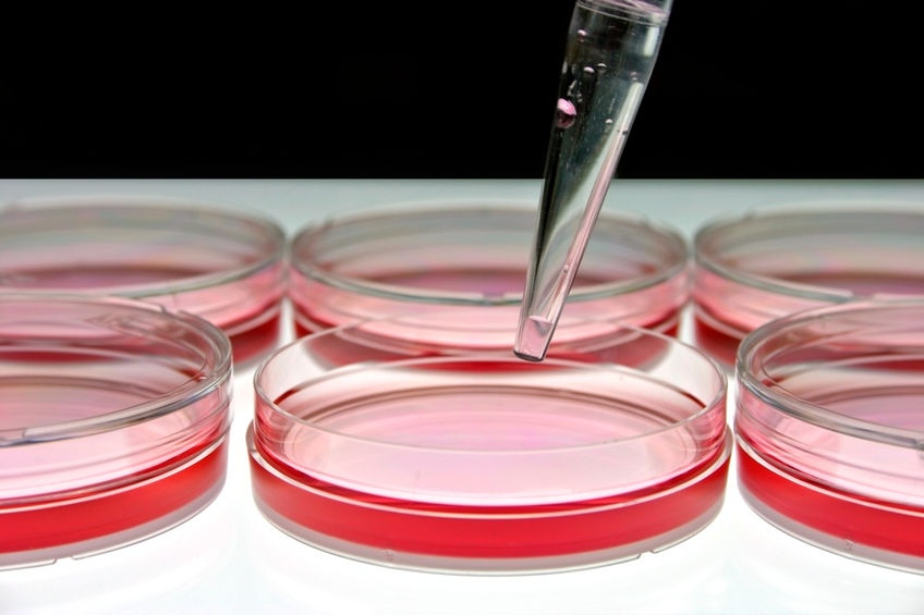 再生医療向けの細胞の受託製造