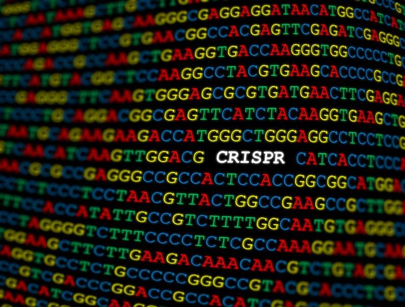 CRISPR/Cas9の世界の特許動向